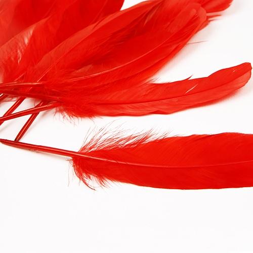 자연산 깃털(대)-레드(10개입)