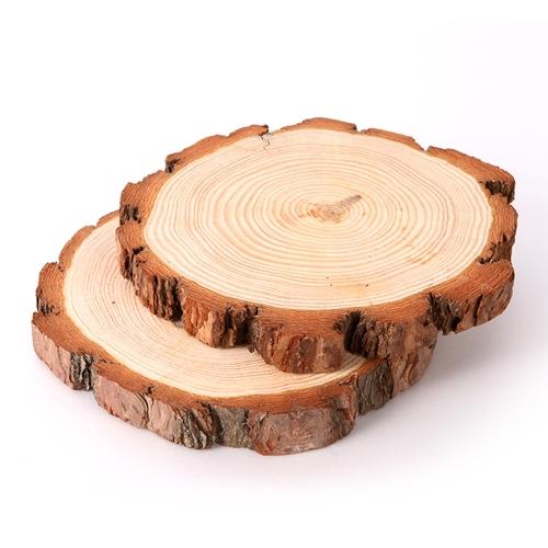 자연물교구 _나이테나무(1ea)
